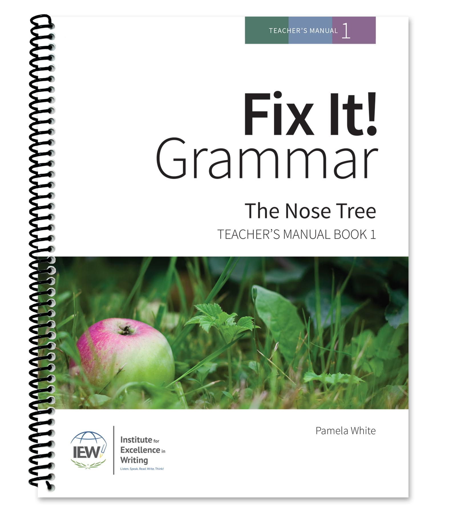 Fix It Grammar Institute For Excellence In Writing